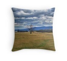 The Wide Open Spaces Throw Pillow