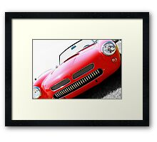 The Stand Out Framed Print