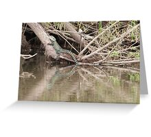 Water Dragon resting in the sun Greeting Card