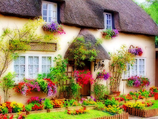 Dorset Cottage - Orton by Colin J Williams Photography