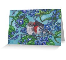 """""""Red Capped Robins Awaiting Dinner Guest"""" Greeting Card"""