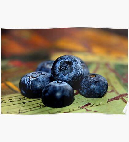 Blueberries - Still Life Poster