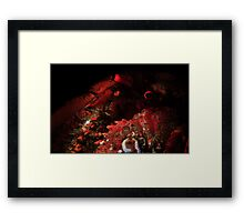 Snooted Hermit Crab Framed Print