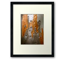 30/1 Gnimic Ululation Framed Print