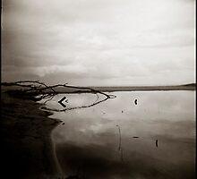 ( dark water ) by Lucia Fischer