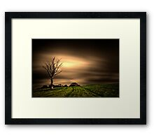 Tree Framed Print