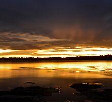 Golden Sunset. (30-1-12) by Warren  Patten