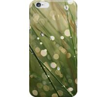After the Rain iPhone case iPhone Case/Skin