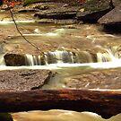 Lost Valley's Flowing Creeks by David  Hughes