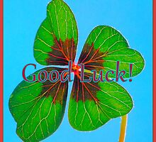 Good Luck! by ©The Creative  Minds