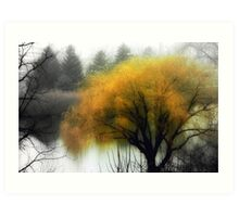 Foggy Morning © Art Print