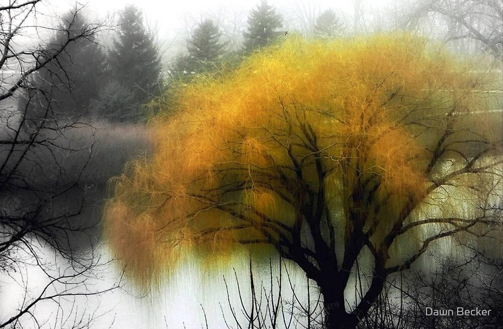Foggy Morning © by Dawn M. Becker