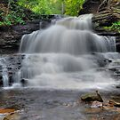 Tuscarora Falls - Ricketts Glen by Stephen Vecchiotti