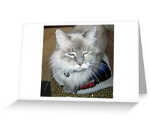 Pearly Girl promoting rescue organizations Greeting Card