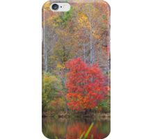 Fabulous October #2 iPhone Case/Skin