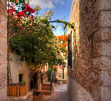 Streets of Halki by Tom Gomez