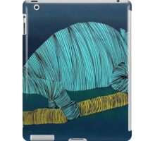 Lib 30 iPad Case/Skin