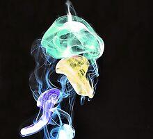 Jellyfish by Del184