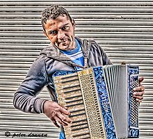 Accordion Man by peter donnan