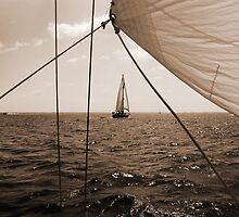 Framed in Our Lines by Ryan Lynham