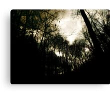 Once upon a Midnight Dreary Canvas Print