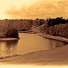 painshill park sepia by Dean Messenger
