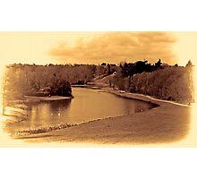 painshill park sepia Photographic Print