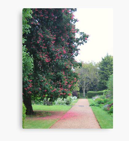 A quiet Oxford garden Canvas Print