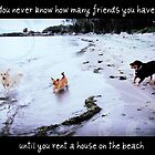 You never know how many friends you have, until you rent a house on the beach by Alice Schuerman