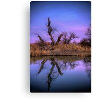 Marsh Mirror Canvas Print