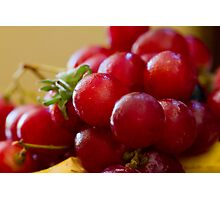 Background of grapes Photographic Print