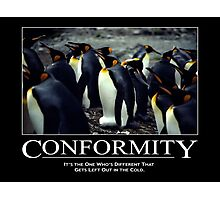 Conformity Photographic Print