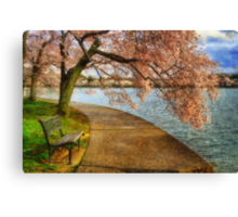 Meet Me At Our Bench Canvas Print