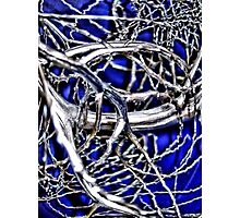 Chrome on Blue Photographic Print