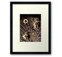 Trapped In Time Framed Print