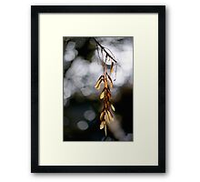In the Silence of the Moment Framed Print