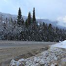 Melting snow by zumi