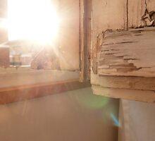 Sunburst by Alex Biernacki