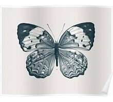 Butterfly - 2 Poster