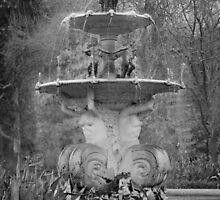 Carlton gardens fountain by Melanie Conroy