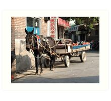 Beijing 2006 - Rural China in the city Art Print