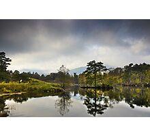 Tarn Hows, Cumbria, England Photographic Print