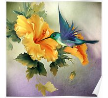 Little Humming Bird Poster