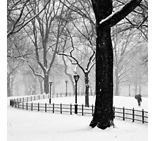 Central Park Walker Photographic Print