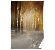 misty woodland path Poster