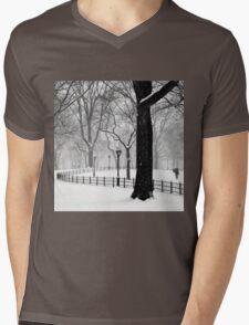 Central Park Walker Mens V-Neck T-Shirt