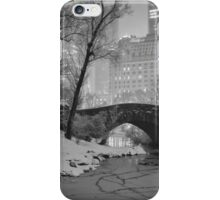 Cracked Lake Under Gapstow Bridge iPhone Case/Skin
