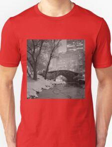 Cracked Lake Under Gapstow Bridge T-Shirt