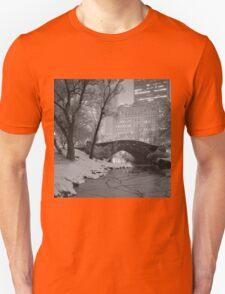 Cracked Lake Under Gapstow Bridge T-Shirt