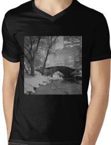 Cracked Lake Under Gapstow Bridge Mens V-Neck T-Shirt